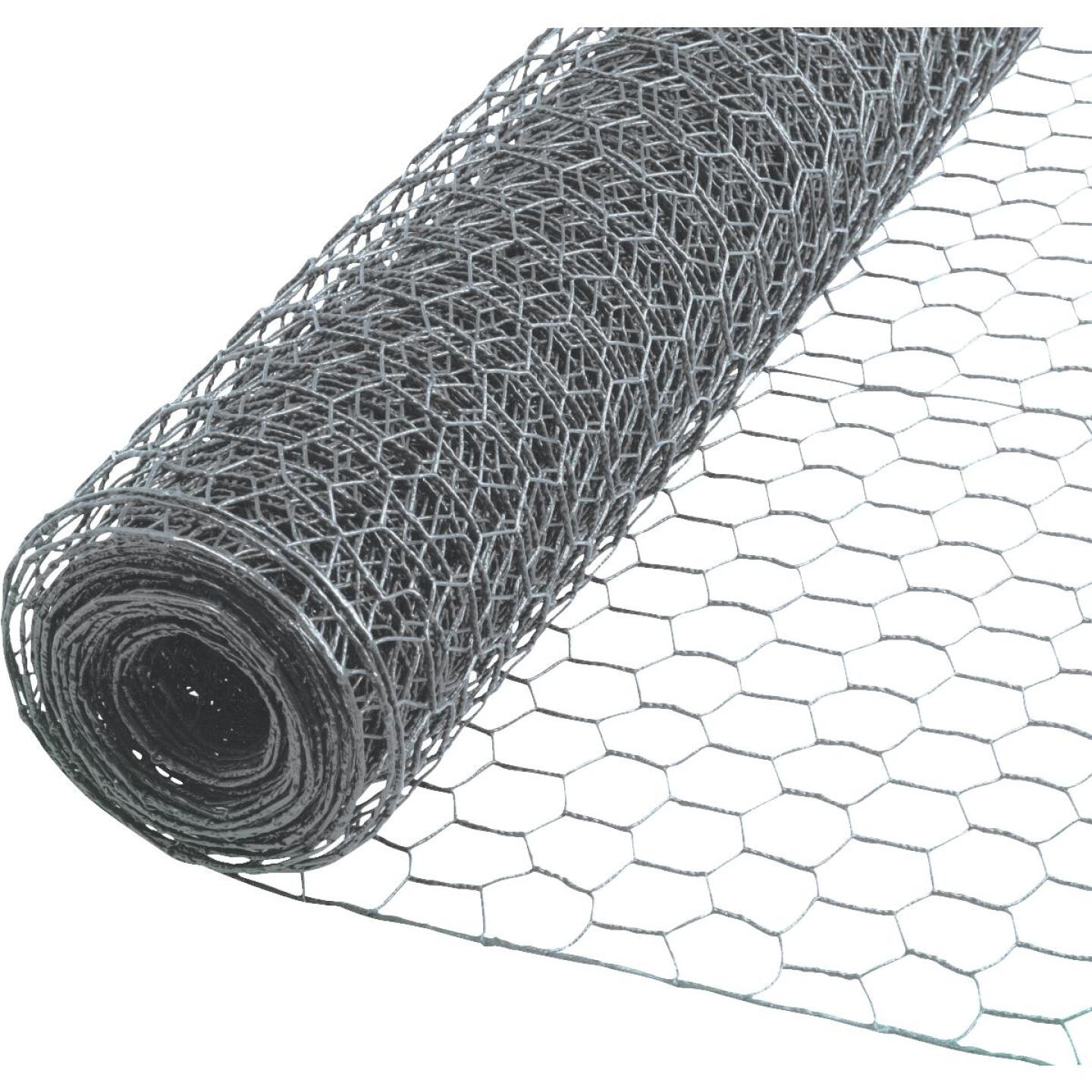 Do it 2 In. x 24 In. H. x 150 Ft. L. Hexagonal Wire Poultry Netting Image 1